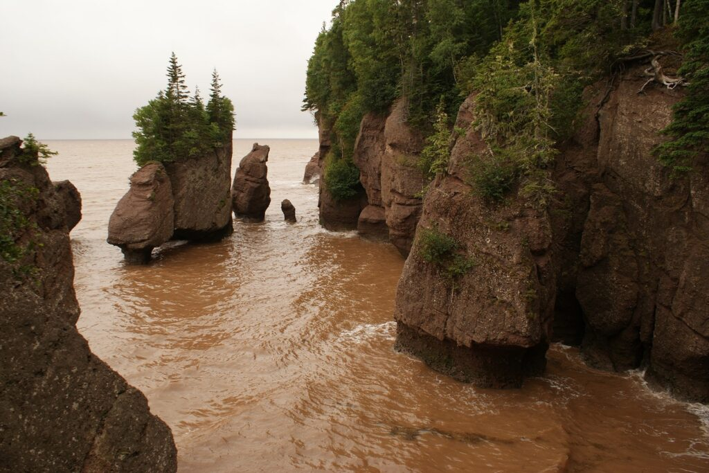 Hopewall rocks in New Brunswick.